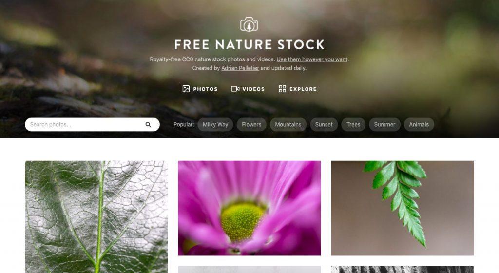 Free Nature Stock : Images gratuites et libres de droit